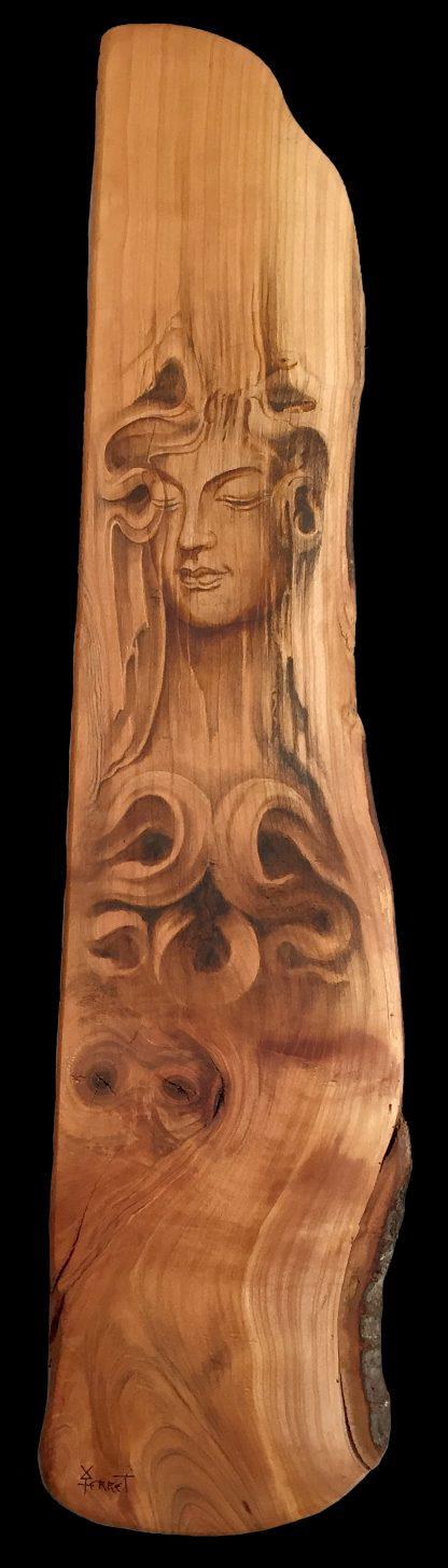 L'âme du bois